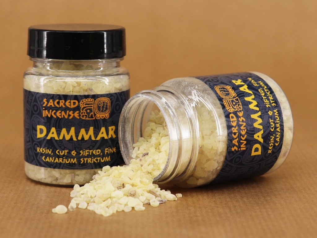 Sacred Incense - Dammar (aka Canarium strictum, Karunkungiliyam